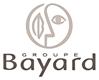 LOGOS GRIS - BAYARD